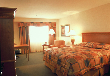 Recently Renovated Rooms at the Hilton